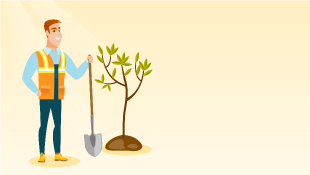 Man holding shovel next to freshly planted tree