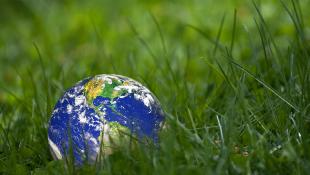 Earth globe sitting on grass