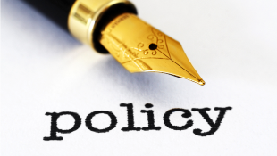 Caligraphy pen over typed word Policy