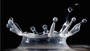 Close up of water droplet