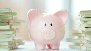 Pink piggy bank with cash around it