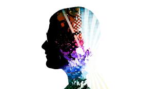 Profile of brain inside body