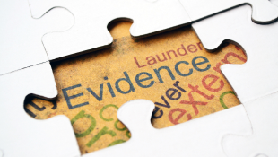 Evidence puzzle piece