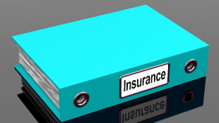 Insurance notebook file