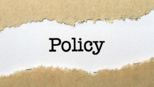 The word policy on ripped paper