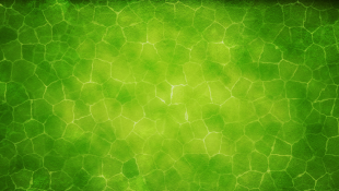 Green hazy color over yellow background